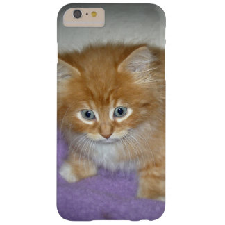 Spot on this kitten barely there iPhone 6 plus case