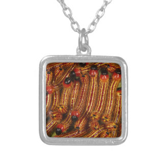 Spotted Datana Moth Caterpillars Square Pendant Necklace