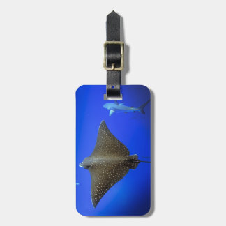 Spotted eagle ray and Galapagos reef shark Luggage Tag
