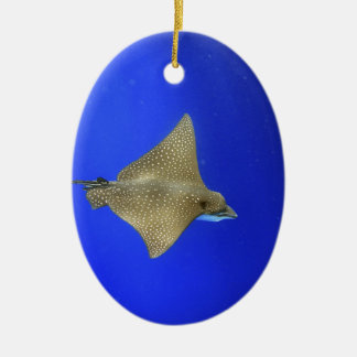 Spotted eagle ray swimming underwater Galapagos Ceramic Ornament