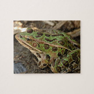 Spotted Frog Jigsaw Puzzle