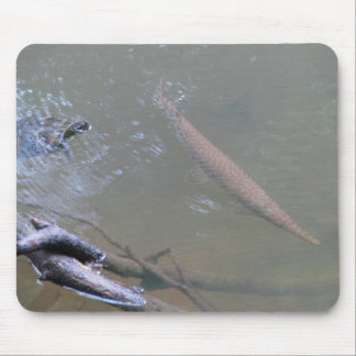 Spotted Gar and Red-eared Slider Mouse Pad
