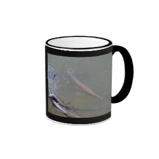 Spotted Gar and Red-eared Slider Ringer Mug