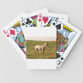 Spotted Horse Stallion Poker Deck
