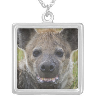Spotted Hyena portrait, Crocuta croduta, Masai Silver Plated Necklace