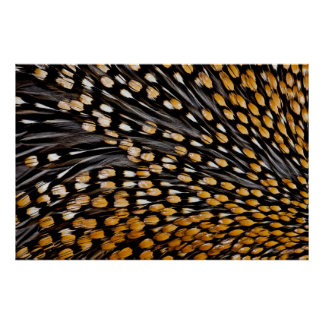 Spotted Jungle Fowl Feather Abstract Poster