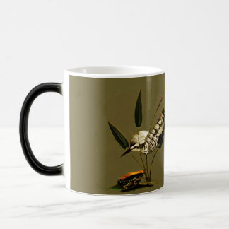 Spotted Kingfisher Magic Mug