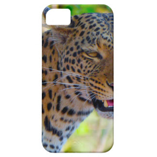 Spotted Leopard iPhone 5 Case