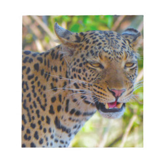 Spotted Leopard Notepad