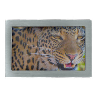 Spotted Leopard Rectangular Belt Buckle