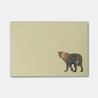 Spotted Leopard Wild Cat Photograph Post-it Notes