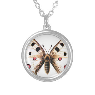 Spotted moth silver plated necklace