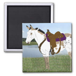 Spotted Mule Square Magnet