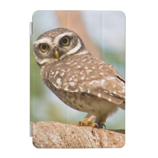 Spotted owl on morning flight. iPad mini cover
