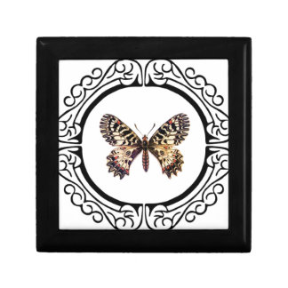 spotted ringed butterfly gift box