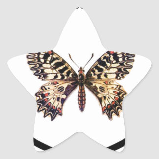 spotted ringed butterfly star sticker