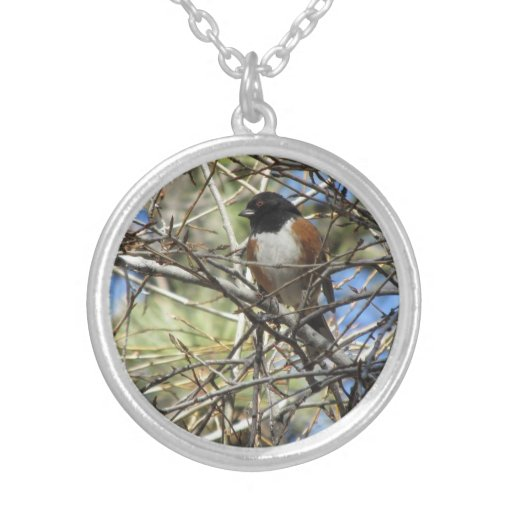 Spotted Towhee Necklaces