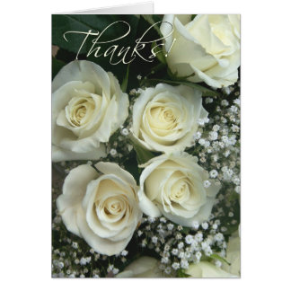 Spray of cream rose Thank you notes! Greeting Card