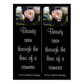 Spray Rose & Rose Bud Bookmarks Postcard