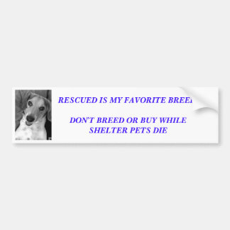 Spread the word bumper sticker