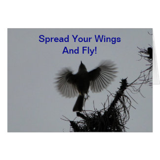 Spread Your Wings And Fly, Tufted Titmouse Card
