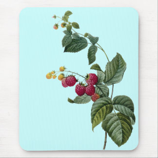 Sprigs of Fruit Mouse Pad