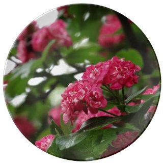 Spring  27.3 cm Decorative Porcelain Plate