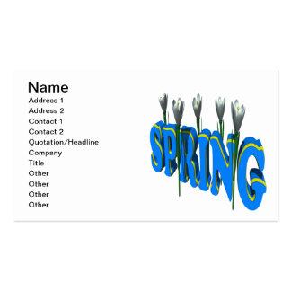 Spring 2 pack of standard business cards