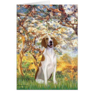 Spring- American Foxhound Card
