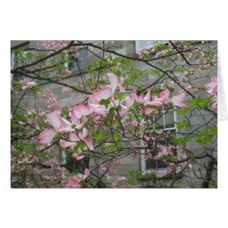 Spring at Swarthmore College Card