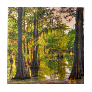 Spring At The Bayou Small Square Tile