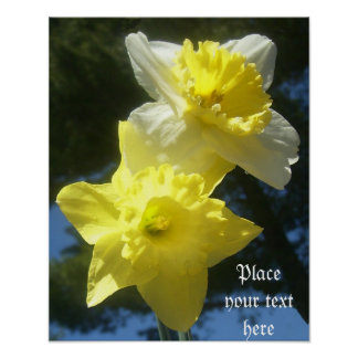 Spring beautiful daffodils customizable poster