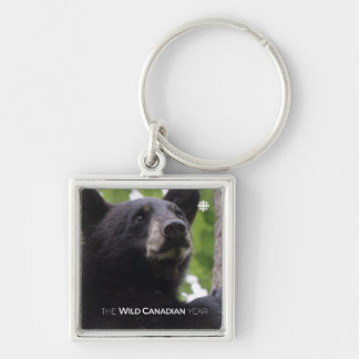 Spring - Black Bear Key Ring