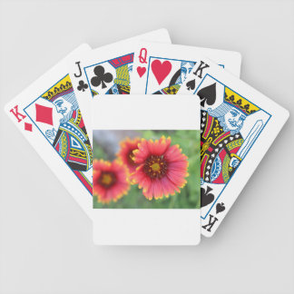 Spring Bloom Pt 2 Bicycle Playing Cards
