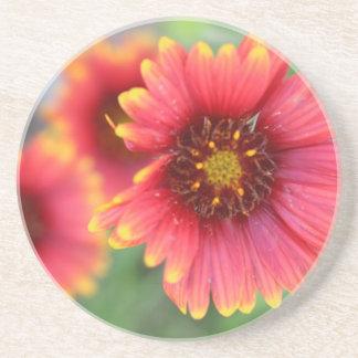 Spring Bloom Pt 2 Coaster