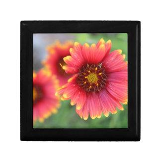 Spring Bloom Pt 2 Gift Box