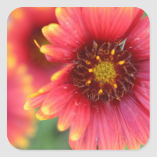 Spring Bloom Pt 2 Square Sticker