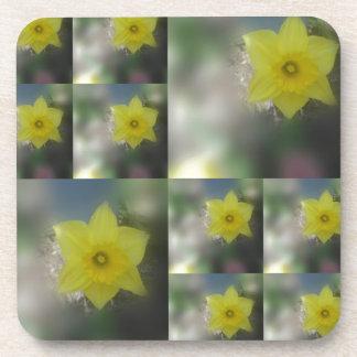 Spring Blooms Coaster