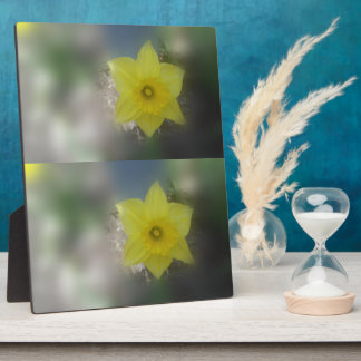 Spring Blooms Plaque