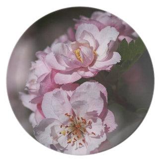 Spring Blossom Display Melamine Plate