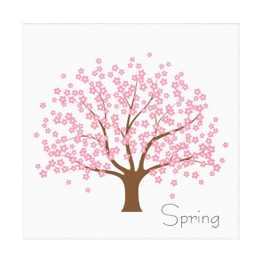 Spring Blossom Tree Gallery Wrap Canvas