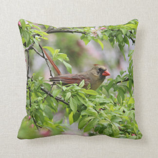 Spring blossoms and Northern Cardinal Cushion