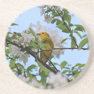 Spring Blossoms and Yellow Warbler Coaster