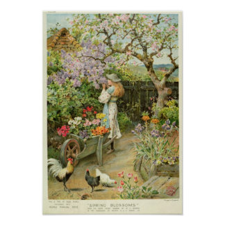 Spring Blossoms, from the Pears Annual, 1902 Poster