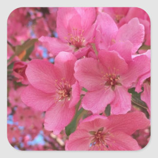 Spring Blossoms Square Sticker