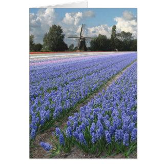 Spring Blue Hyacinth Flowers Field Windmill Greeting Card