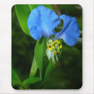 Spring Blue mousepad