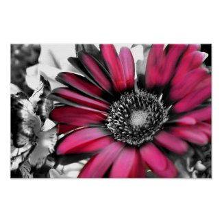 Spring Bouquet in Black & White Poster