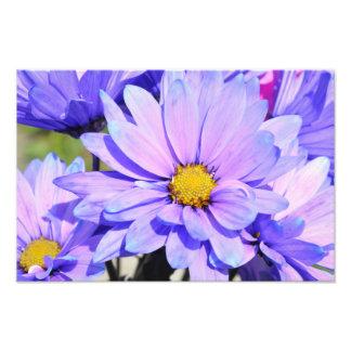 Spring Bouquet Photo Print