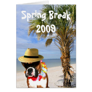 Spring Break Boxer dog greeting card